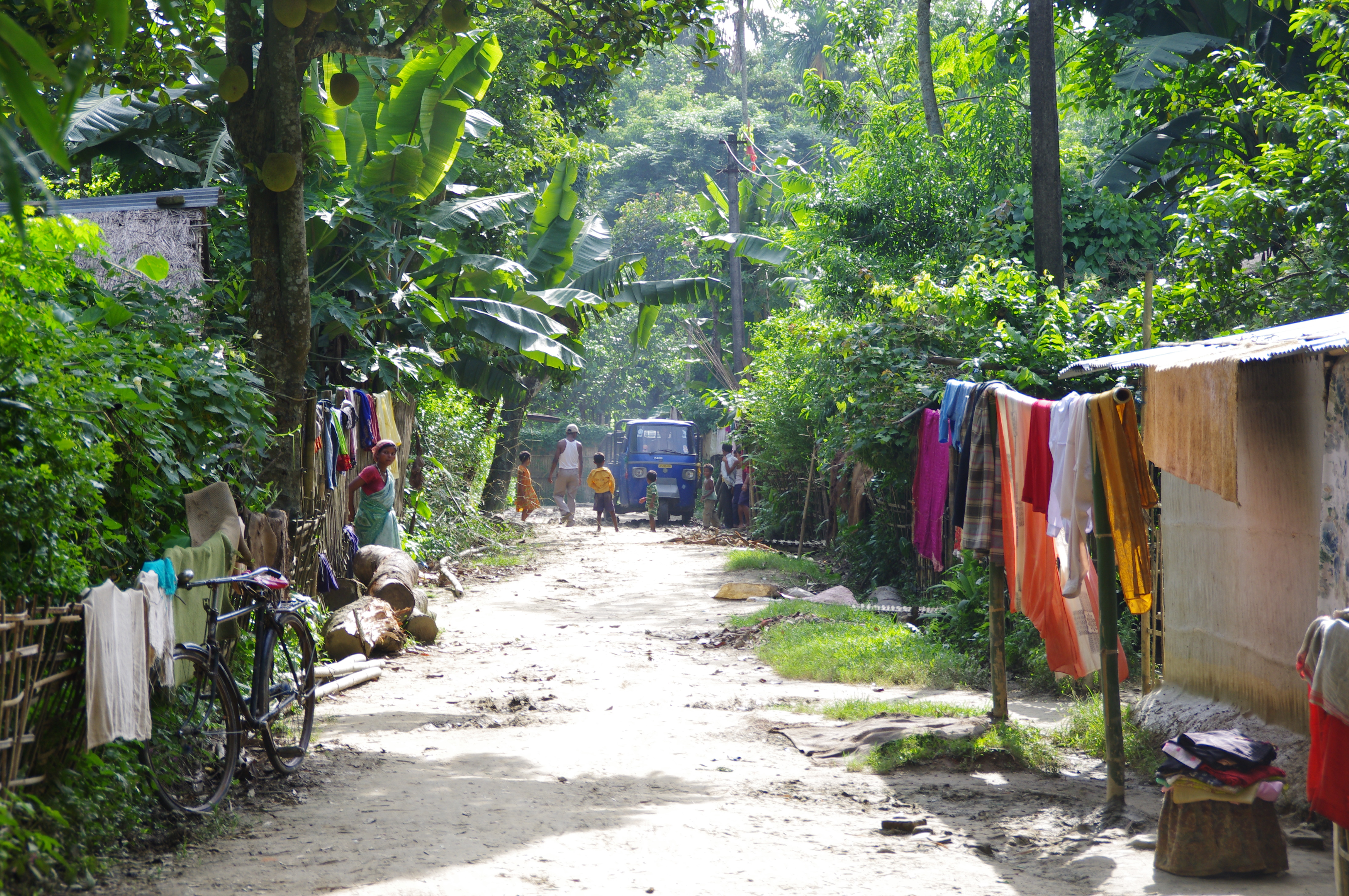 Sanitation in Assam